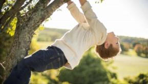 Cameron  climbing tree